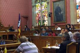 El Consell de Mallorca rechaza la ampliación del puerto del Molinar