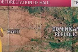 Una presentadora atribuye la destrucción del huracán Matthew a que los niños haitianos se comen los árboles