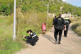 Unos ladrones de cobre vuelven a robar parte del cableado de las farolas del paseo de Calvià