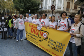 Unas 150 personas protestan en Palma contra el CETA y el TTIP frente a la Delegación del Gobierno