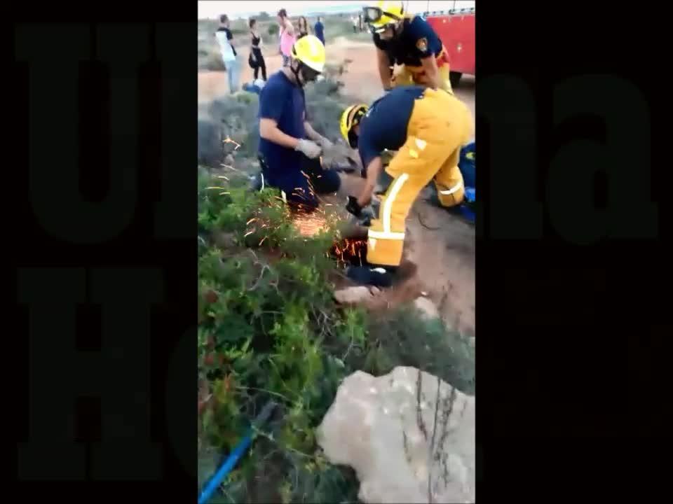 Rescatan a un perro en Es Carnatge tras caer en un pozo abierto de ocho metros