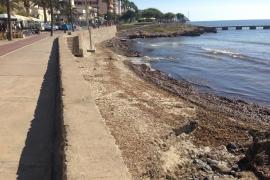 El Ajuntament de Son Servera destinará más de 600.000 euros a la reforma de calles de Cala Millor
