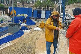 La cofradía de pescadores del Port de Sóller espera que la nueva lonja se construya en 2017