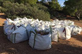 Agentes del Ibanat retiran diez toneladas de escombros del parque natural de Sa Dragonera