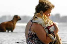 Llucmajor apuesta por atraer turismo nórdico con mascotas