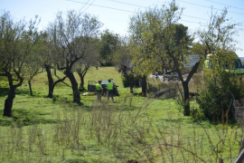 Fallece un hombre en Calvià tras salirse de la carretera