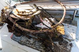 Recuperan más de una tonelada de residuos de las playas y fondos marinos de Calvià