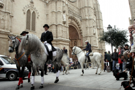 Beneïdes de Sant Antoni en Palma