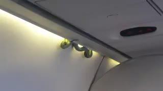 Una serpiente sorprende a los pasajeros de un vuelo a México