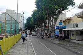 La reforma del paseo de Cala Bona supondrá la tala de los árboles que provocan daños