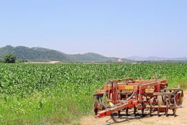 El municipio apuesta por recuperar tierras en desuso y crear una marca local