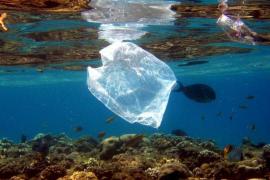 Destacan la necesidad de incluir la eliminación de las bolsas de plástico en el Plan de Residuos
