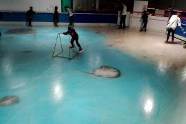 Pista de hielo con peces congelados
