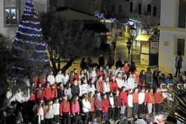 Sant Antoni y Santa Eulària ya presumen de árbol de Navidad