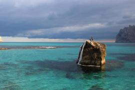 Un estudio revela el potencial de Cala Sant Vicenç para ser reserva marina