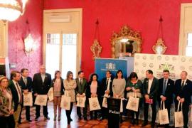 El Parlament reclama una normativa para el voluntariado de Baleares