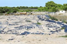Ramsar aconseja desestimar de forma definitiva el golf de Son Bosc