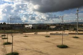 Manacor consigue 21.370 metros cuadrados con la recepción del polígono agroalimentario