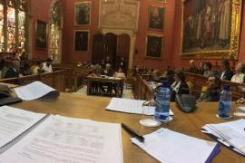 Todos los grupos del Consell apoyan la creación del Museo de Arte