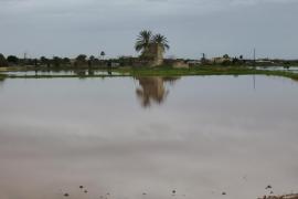 El PSOE insta en el Senado al Gobierno a agilizar las ayudas por las inundaciones