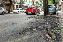 Vecinos de la avenida del Torrent de Manacor denuncian el mal estado de la vía