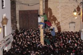 'El Pi de Ternelles' marca las fiestas de Sant Antoni 2017 en Pollença