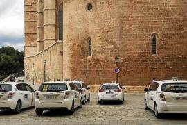 Presentan un requerimiento judicial para amonestar a Cort por no impedir taxis en la Seu