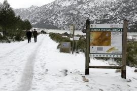 Mañana puede nevar a partir de 600 metros en Mallorca