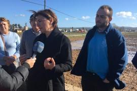 El PP acusa a Cort de dejadez tras las inundaciones en el Pla de Sant Jordi