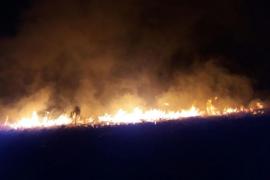 Controlado el incendio forestal en es Miner Petit