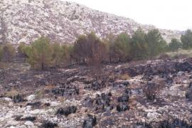 Extinguido el fuego en es Miner Petit tras quemar 17 hectáreas