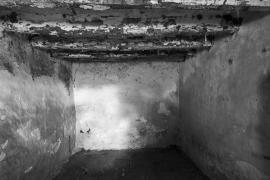 'Deu mirades a l'abandó', una colectiva en La Misericòrdia
