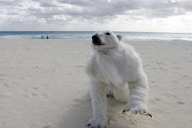 La ONU pide «superar intereses» particulares en la cumbre de Cancún