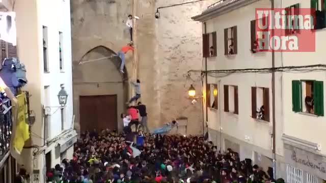 Pi de Sant Antoni de Pollença, con polémica