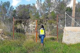 El propietario del club hípico detenido en Palma enterraba a los caballos aún agonizantes