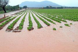 La lluvia anega los campos y pone en riesgo la cosecha de patata y cereales