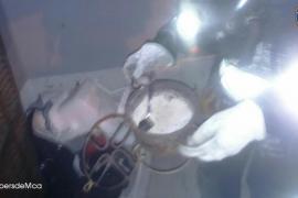Dos personas, intoxicadas por monóxido de carbono en Inca