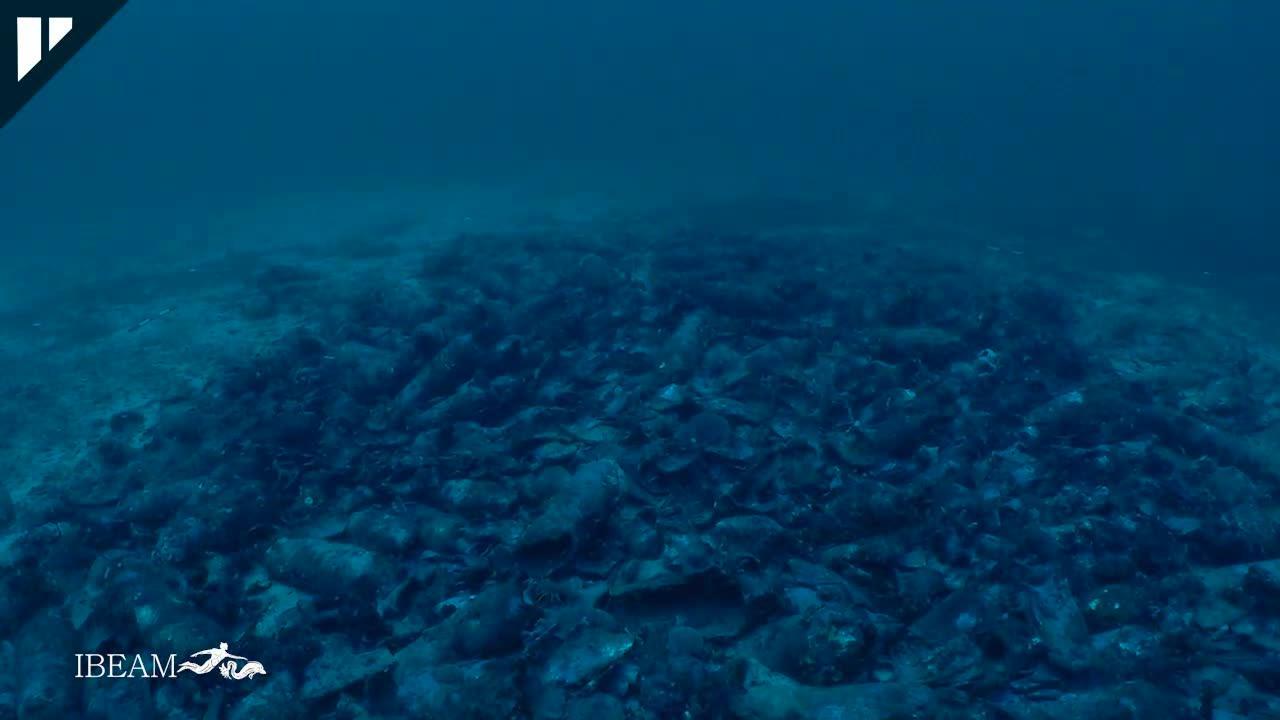 El pecio romano encontrado en Cabrera en 2016 transportaba ánforas del norte de África