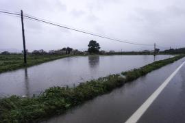Los payeses ven una «burla» las ayudas convocadas por los daños del temporal