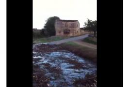 Críticas a Melià (PI) por usar un vídeo antiguo de suciedad en los torrentes para censurar a Vidal