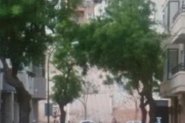 Ayuntamiento ecologista