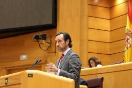 Quejas en el PP porque «José Ramón Bauzá no da palo al agua en el Senado»