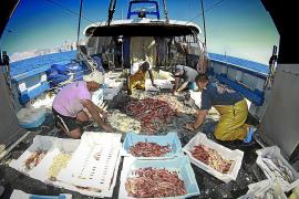 Las pérdidas de los pescadores por el temporal llegan a los 400.000 euros
