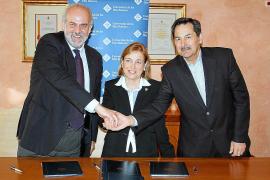 La Universitat estudiará la viabilidad de la denominación de origen Oliva de Mallorca