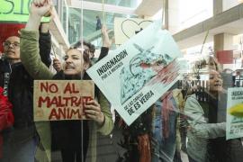 Pacma pide paralizar la matanza de cabras de la finca de Galatzó