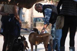 La Policía Local inicia una campaña de control de perros