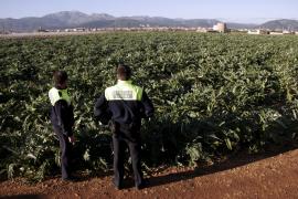«Que los payeses hagan patrullas de vigilancia es un mal síntoma»