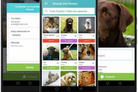 Nace Miwuki, una aplicación que facilita adoptar animales de protectoras de todo el mundo