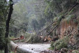 Reabren la carretera del Coll de Sóller cerrada tras un desprendimiento