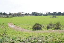 El alcalde de Santa Margalida propone crear un «pulmón verde» de 275.000 metros en Can Picafort